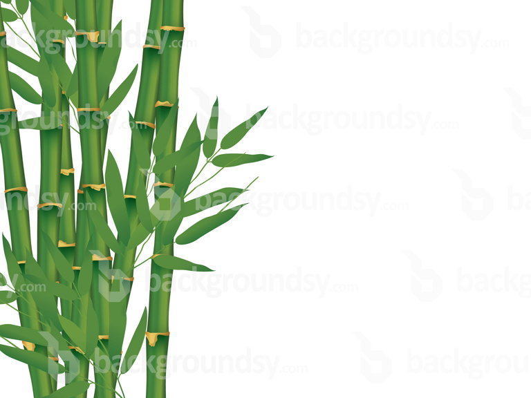 bamboo-isolated
